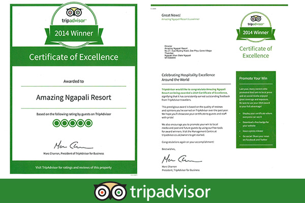 certificate of excellence By Tripadvisor.com